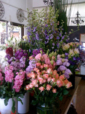About Dee Why Florist (Robyn Anne Florist)