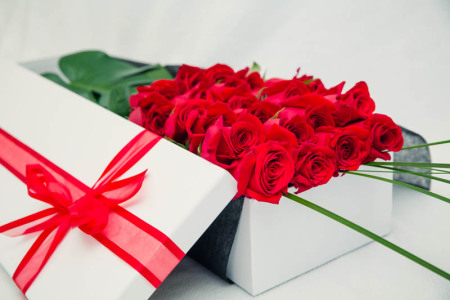 24 premium long stemmed red roses