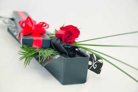 Single red rose presented in box